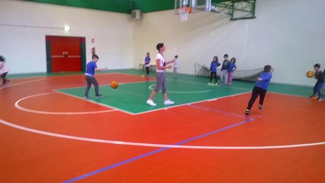 basket16