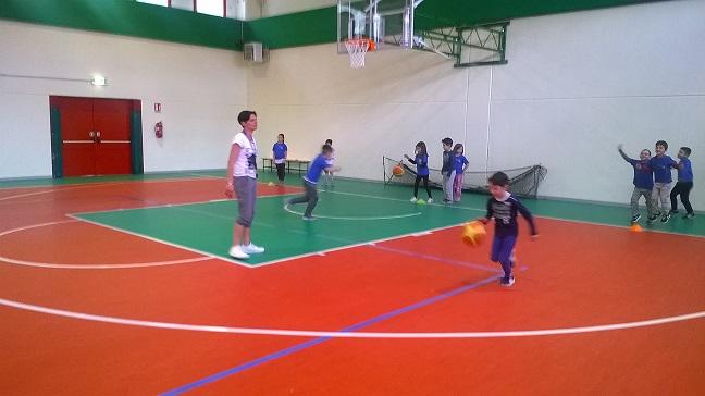 basket18